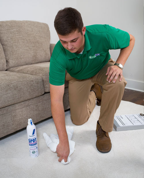 Executive Chem-Dry Technician Removing Stain From White Carpet